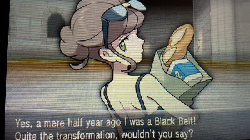 Pokemon: A Wild Trans Person Appeared!
