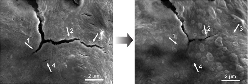How an Odd Property of Acid Created Self-Healing Iron