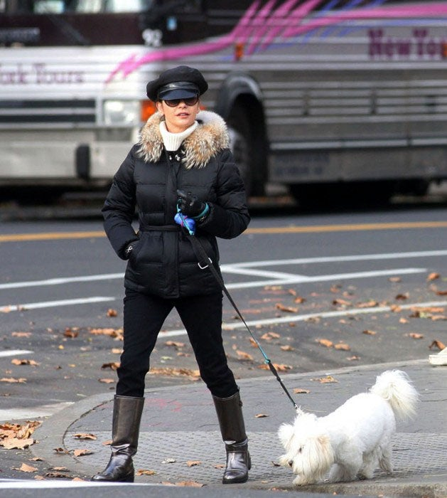 Catherine Zeta Jones Walks Her Own Dog
