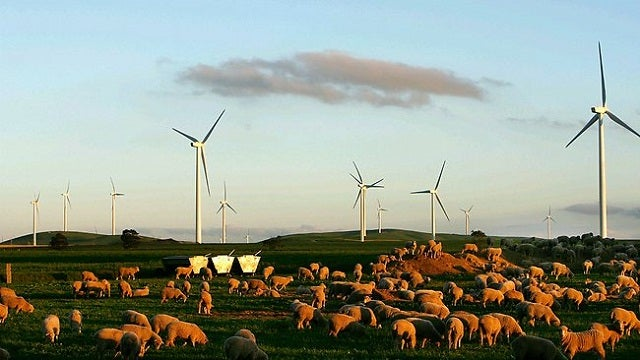 Australian Wind Farms Blamed for Electromagnetic Skull Spasms