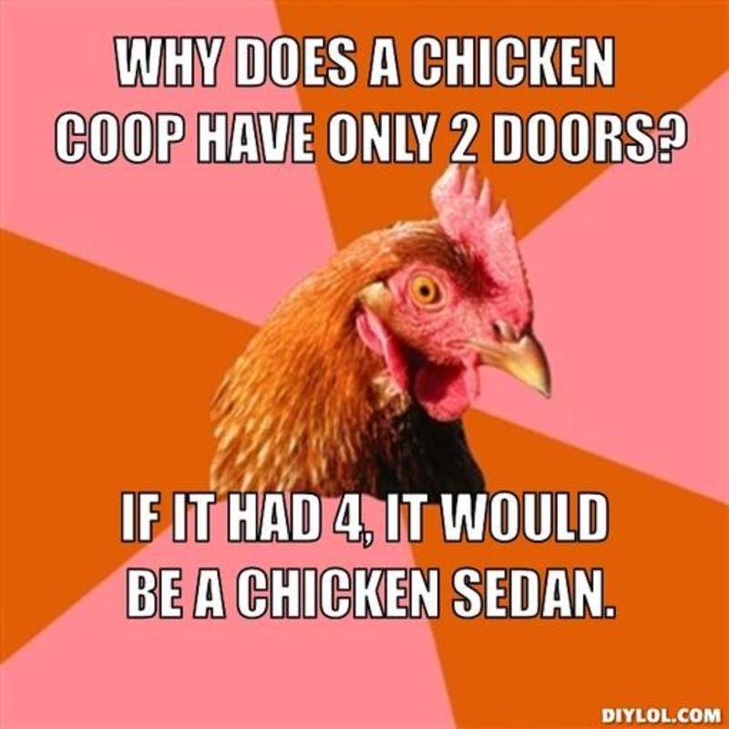 Chickens yo