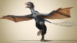 <i>Yi qi</i> May Be The Most Bizarre Dinosaur You'll Ever See