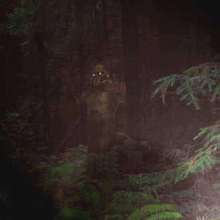 The five strangest theories about Sasquatch