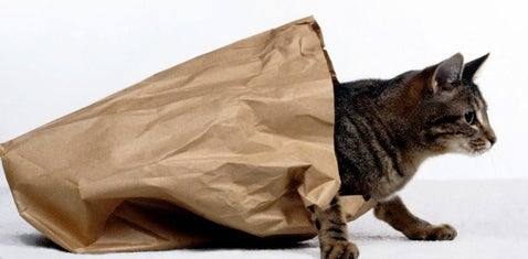 Embargo Agreements Only Work When Cat Stays In Bag