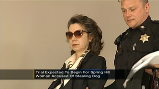 Woman Found Guilty of Euthanizing Terminally Ill Neighbor's Dog