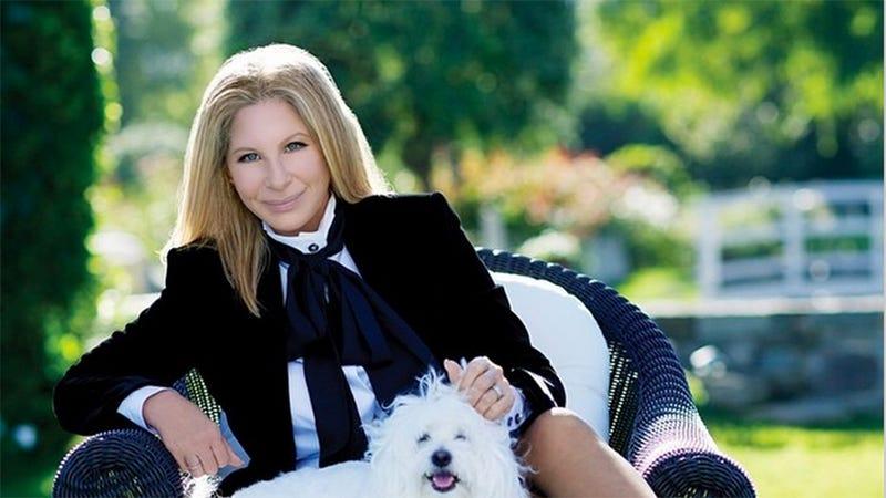 Barbra Streisand and Her Dog Join Instagram