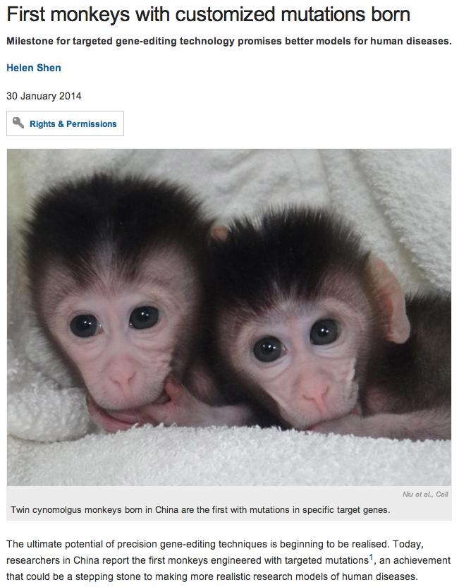 Bioengineered monkeys with human genetic diseases have almost arrived