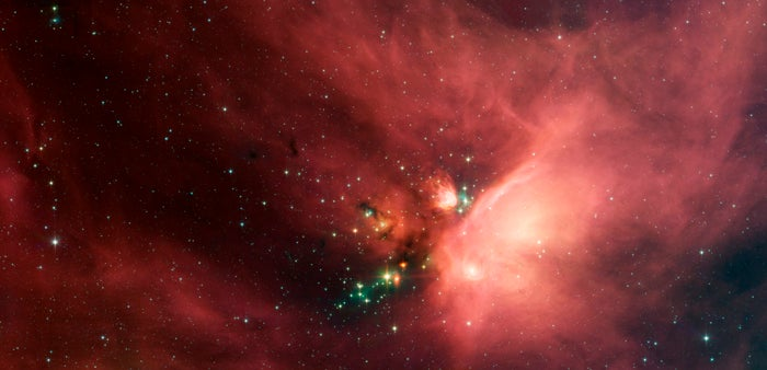 300 Baby Stars In Our Nearest Star-Factory