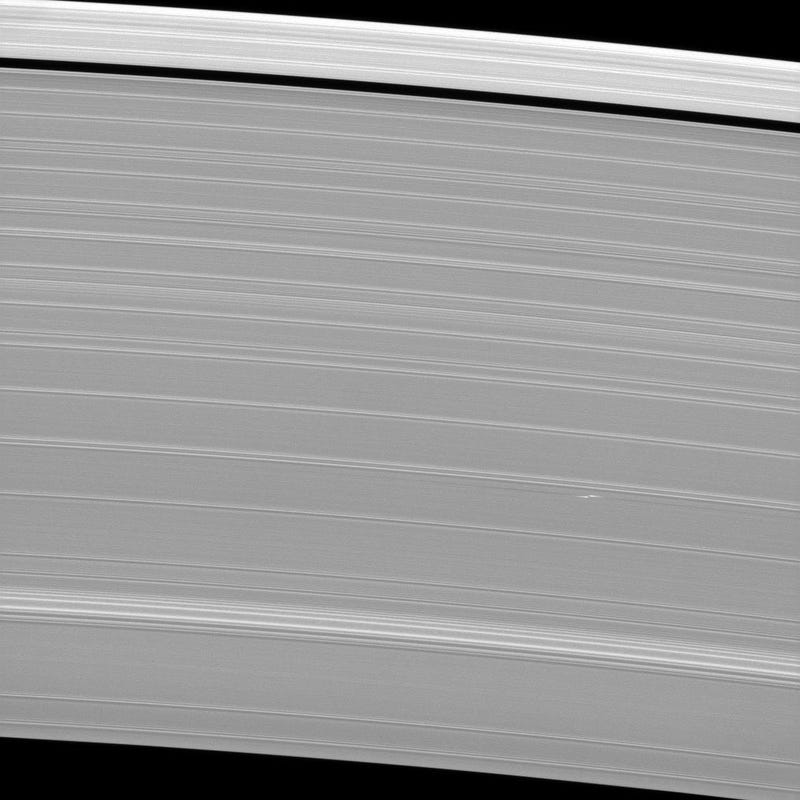 The mysterious propellers in Saturn's rings
