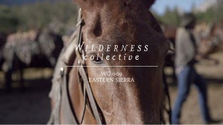 Watch This: Pack Horse Camping In The John Muir Wilderness