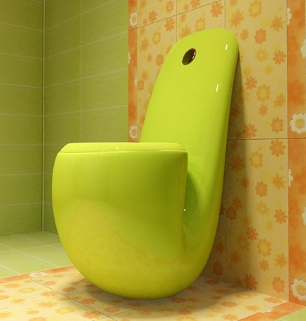 Post-Singularity Toilets