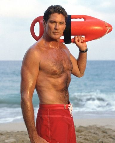 Hasselhoff Uses Stardom To Score A Wii — How The Mighty Have Fallen