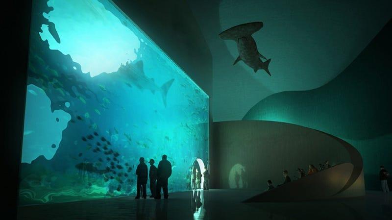 An Aquarium Made of Colossal Beach Pebbles