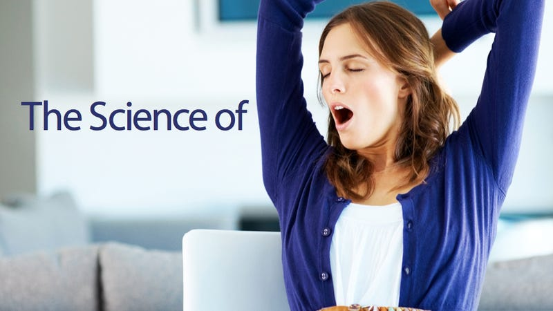 Why We Yawn—And Why Yawning Is So Contagious