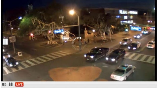 Let Us Begin Our All-Night Tree Vigil For The Oaks At Toomer's Corner
