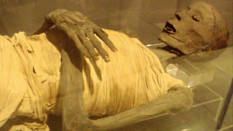 The Science of Mummies