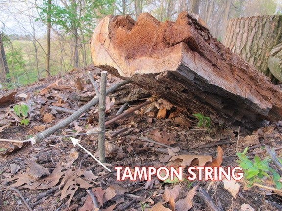 The Swiss Army Tampon: A Life-Saving Wilderness Survival Tool