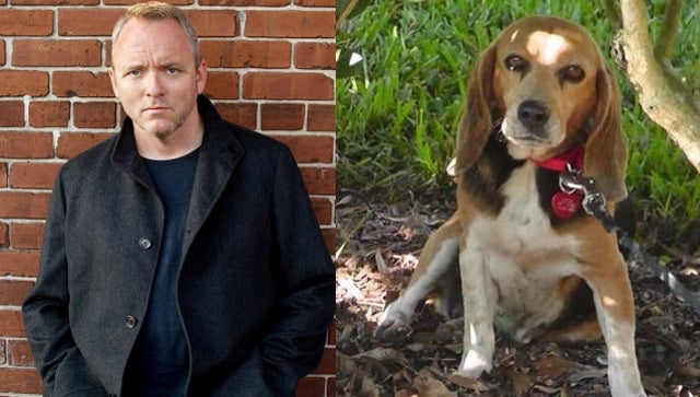 If You Help Gone, Baby, Gone Writer Dennis Lehane Locate His Lost Dog, He'll Put You In His Next Book