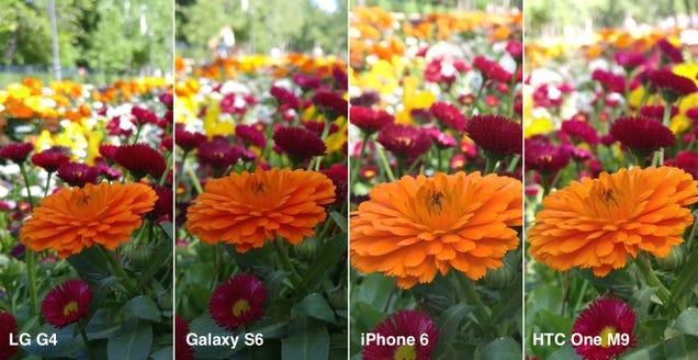 Duelo fotográfico: cuatro de los mejores smartphones, frente a frente