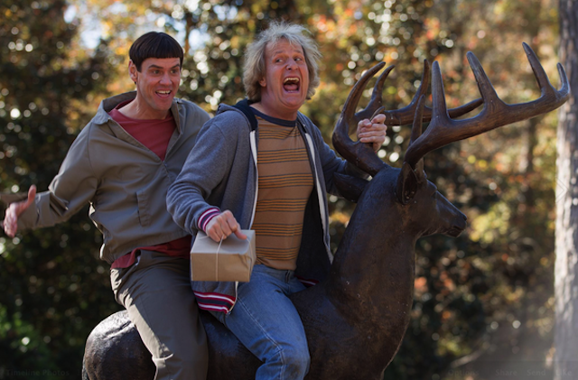 The First Image From Dumb and Dumber To Is Here