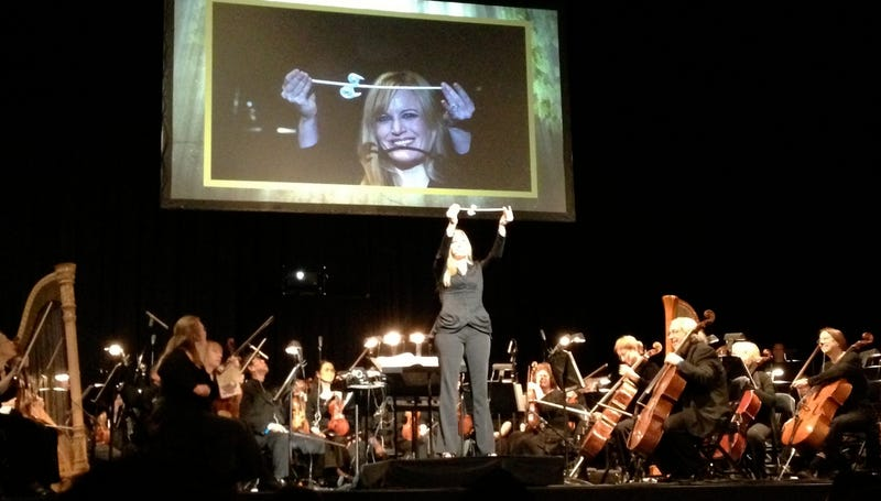 The Ups and Downs of a Night Out at the Official Zelda Concert