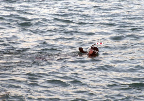 Channel-Crossing Quadruple Amputee Sets Sights on Europe to Africa Swim