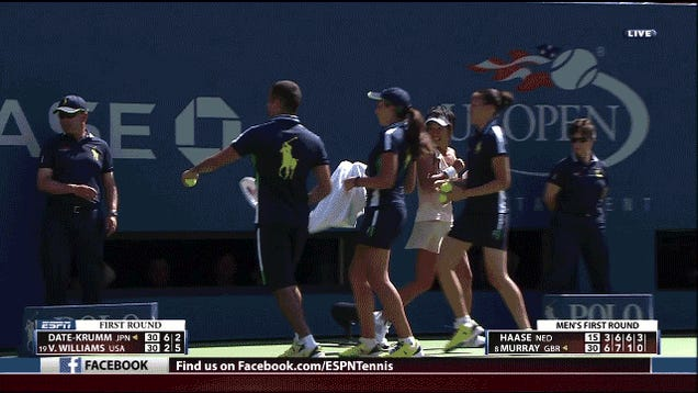 Single Bee Delays U.S. Open Match, Nearly Outwits Three Ballkids