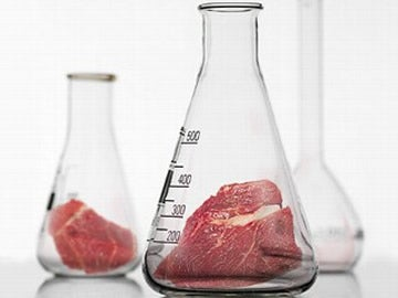 Vat-Grown Meat Alive in the Lab, But Not Ready to Eat