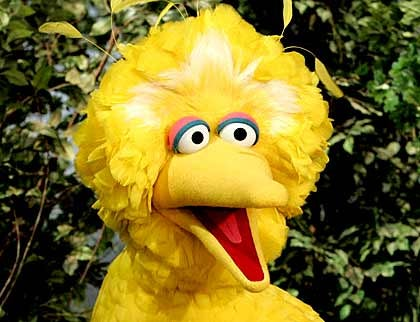 What Would You Like to Ask Big Bird?