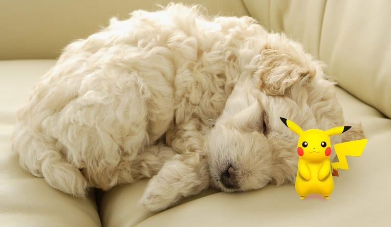 Lazy Sunday Review: Pokemon X/Y