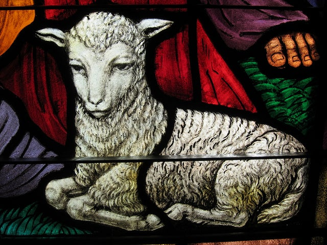 Jesus Returns as Lamb
