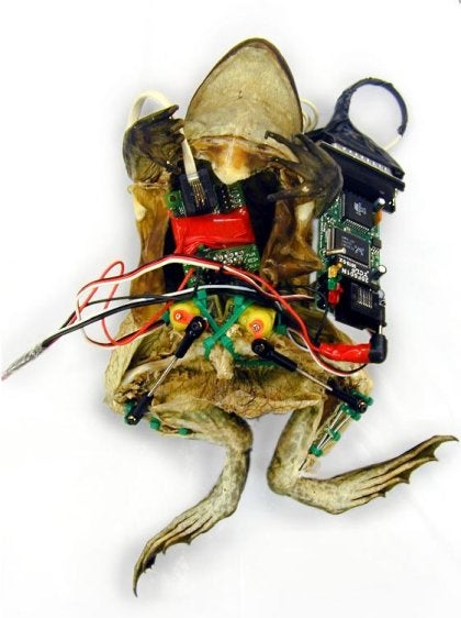 Control a Dead Frog via the Web