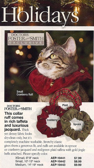 Doctors Foster & Smith: The Crazy Cat Lady Catalog