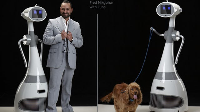 On Sale Later This Year, Luna the Robot Can Walk Dogs and Do Other *Wink* Things