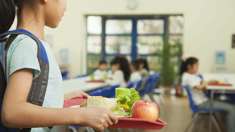 WTF: Utah Elementary School Seizes Lunches from Indebted Kids