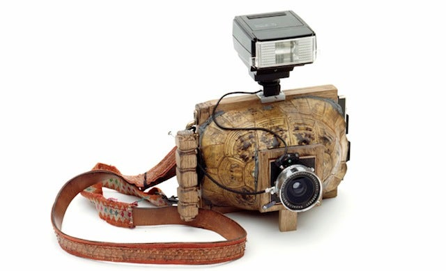 Curious cameras made from stuffed armadillos and turtle shells