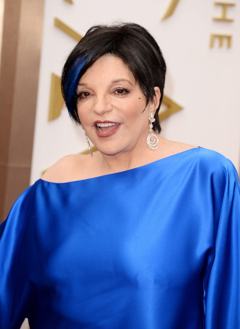 Here Are Liza Minnelli's Nipples