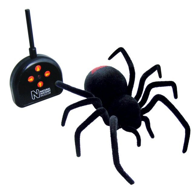 Remote Controlled Black Widow Spider Probably Won't Last Very Long