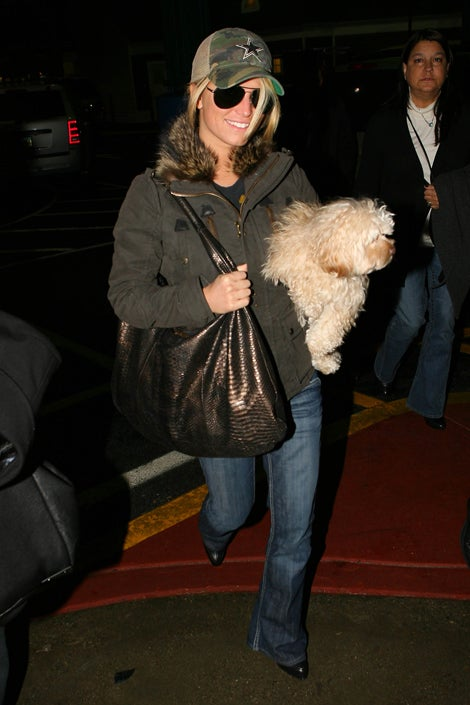 Jessica Simpson's Dog Disapproves Of The Paparazzi