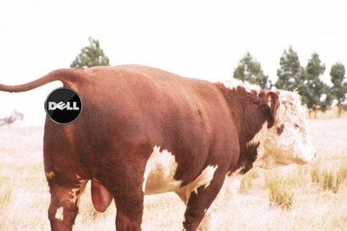 """Dell's """"Carbon Neutrality"""" Is Really a Bunch of Cow Poop"""