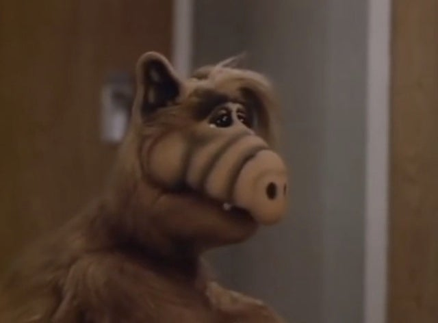 The ALF Christmas Special may be the root of all holiday depression