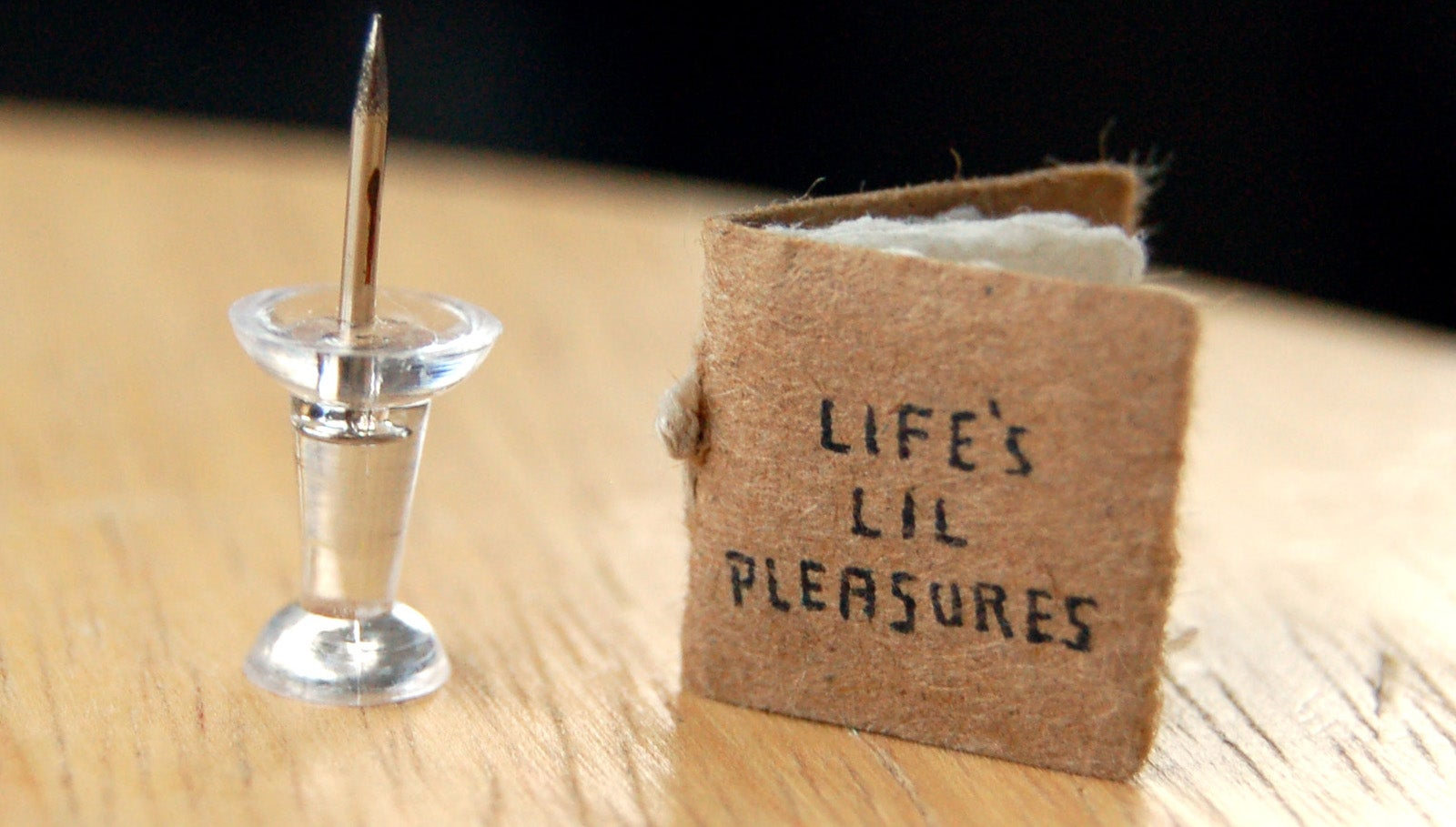 the little pleasures of life Life's lil pleasures was created by illustrator and designer evan lorenzen lorenzen has spent the last year building a library of micro books with diverse themes, including one that details major events in earth's history, a tiny book of big words, and a field guide to cereal.