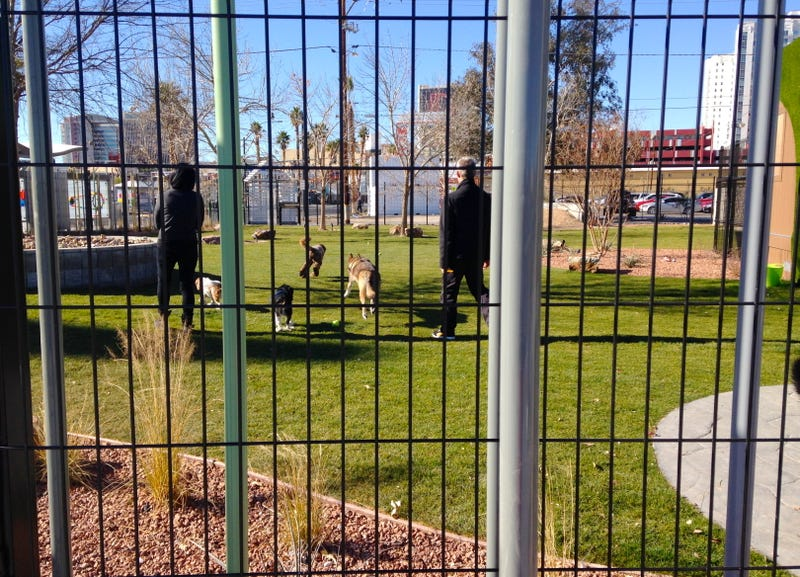 Visiting the Downtown Project's New Vegas Parks: Pretty, But Private