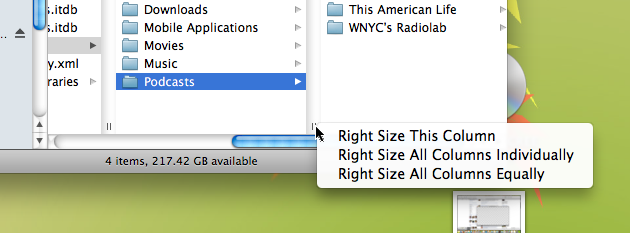 Master and Customize Column Widths in OS X Finder