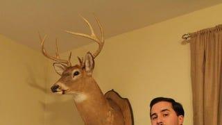 I am Jagvar's stuffed deer.  AMA