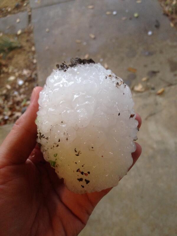 Denton had a bit of hail today