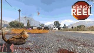 <i>GTA </i>Cat Goes On Molotov Cocktail Rampage