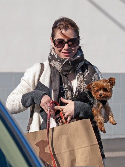 Alyson Hannigan's Got A Big Bag & A Little Dog