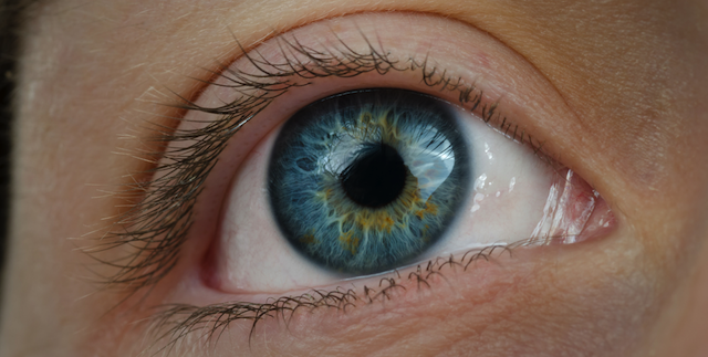 A Simple Eye Test Could Accurately Detect Alzheimer's