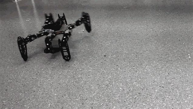 Watch This Bot With a Broken Leg Learn To Walk Straight Again